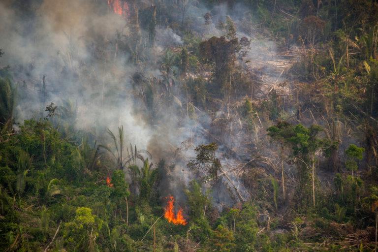 Fire in the Jaci-Paraná Extractive Reserve, in Porto Velho, Rondônia state. Taken 16 Aug, 2020. CREDIT: © Christian Braga / Greenpeace