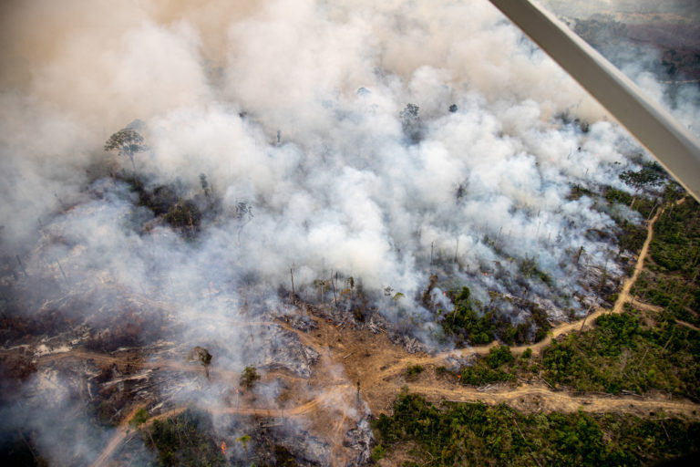 Live heat spots in areas with Prodes 2019 and Deter warnings, in Colniza, Mato Grosso state. Taken 17 Aug, 2020. CREDIT: © Christian Braga / Greenpeace