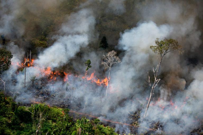 Titik panas di area dengan peringatan Prodes (2017-2019).  Area di sebelah perbatasan wilayah Adat Kaxarari, di Lábrea, negara bagian Amazonas.  Diambil 17 Agustus, 2020. KREDIT: © Christian Braga / Greenpeace