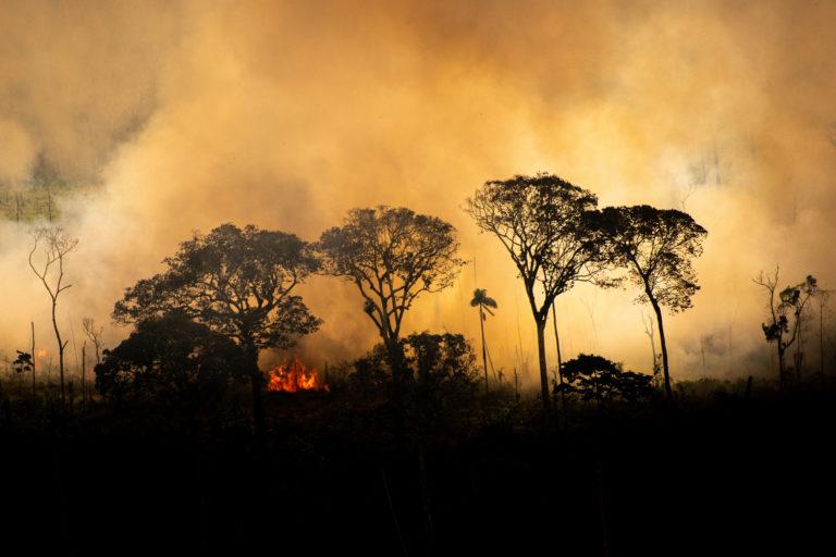 Hots spots em áreas com avisos do Prodes indicando desmatamento entre 2017 e 2019. Área próxima aos limites do território indígena Kaxarari em Lábrea, no estado do Amazonas.  Tirada em 17 de agosto de 2020. CRÉDITO: © Christian Braga / Greenpeace