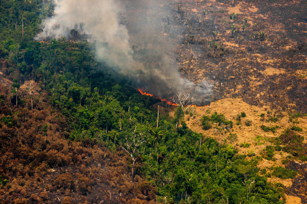 Live hotspots in areas with Prodes 2019 and Deter warnings, in Colniza, Mato Grosso state. Taken 17 Aug, 2020. CREDIT: © Christian Braga / Greenpeace