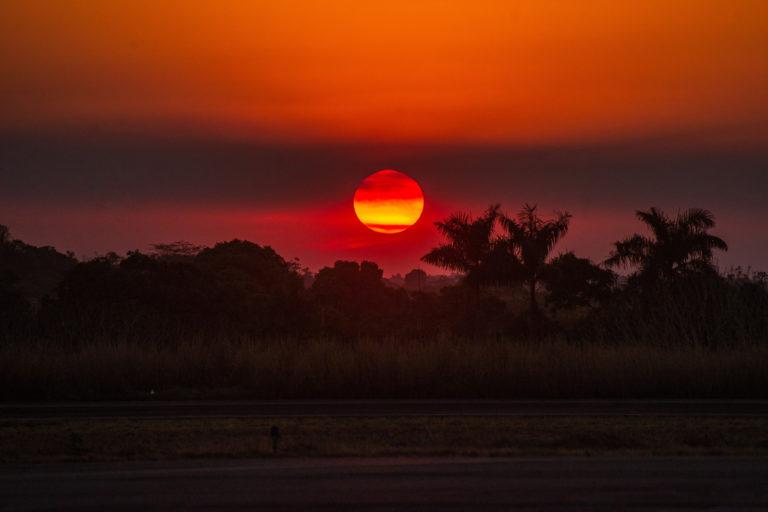 Alta Floresta, Mato Grosso state. Taken 18 Aug, 2020. CREDIT: © Christian Braga / Greenpeace