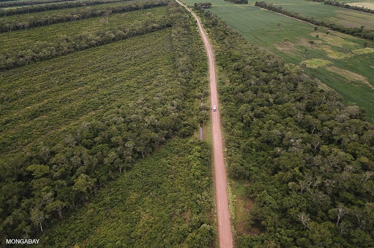 Deforestation for soy along a road in the Bolivian Chaco. Image by Rhett A. Butler/Mongabay.