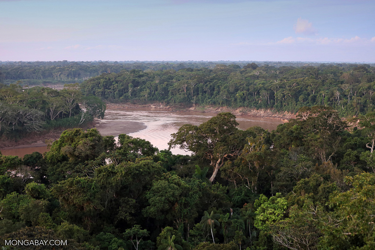 The Tambopata River in the heart of Madre de Dios. Image by Rhett A. Butler/Mongabay.