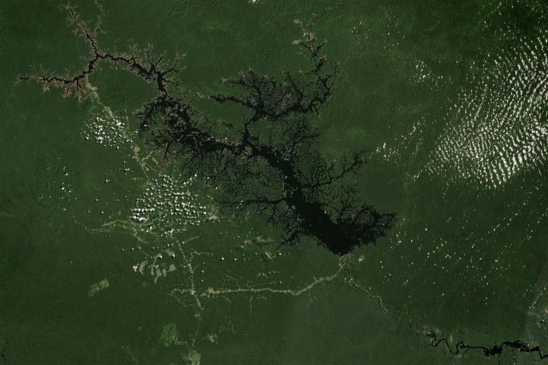 Satellite image of the Balbina Dam in Brazil in September 2020. Courtesy of Zoom.Earth.