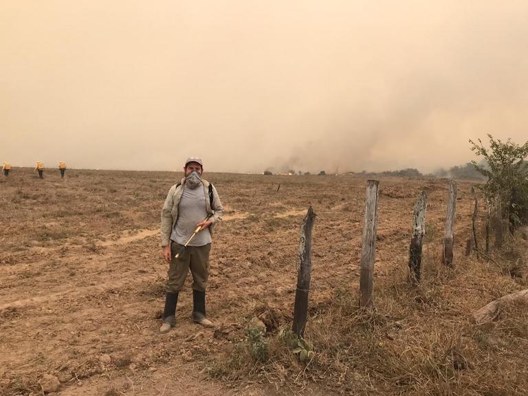 Incêndios no Pantanal podem provocar uma redução na população de onças-pintadas no Brasil