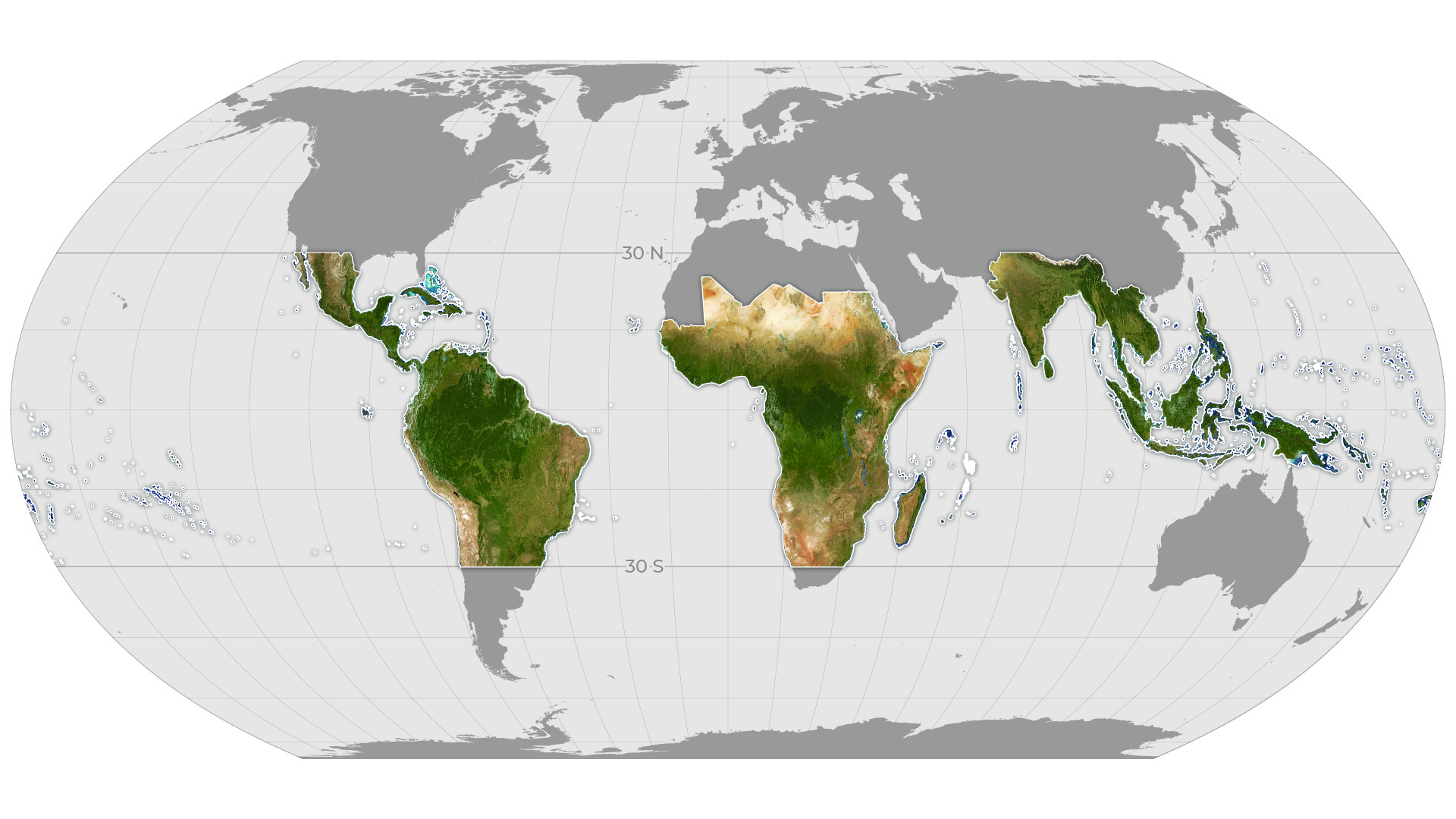Global map showing the extent of monthly Planet Basemaps to be provided through the partnership for tropical forest monitoring. Image courtesy of Planet Labs Inc.