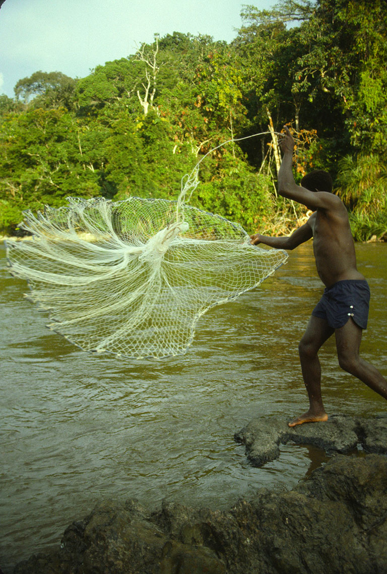 The importance of fresh water fish in the diets and wellbeing of Indigenous Peoples and Local Communities is too often overlooked. Here a Mbira fisher casts his net in the Epulu river of northeastern DR Congo. Photo © Bryan Curran/WCS
