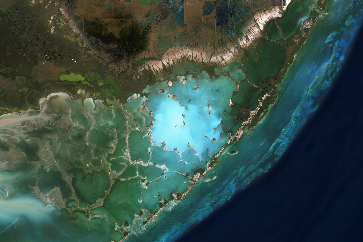 Satellite image of a portion of Everglades National Park in Florida. Courtesy of Zoom.Earth