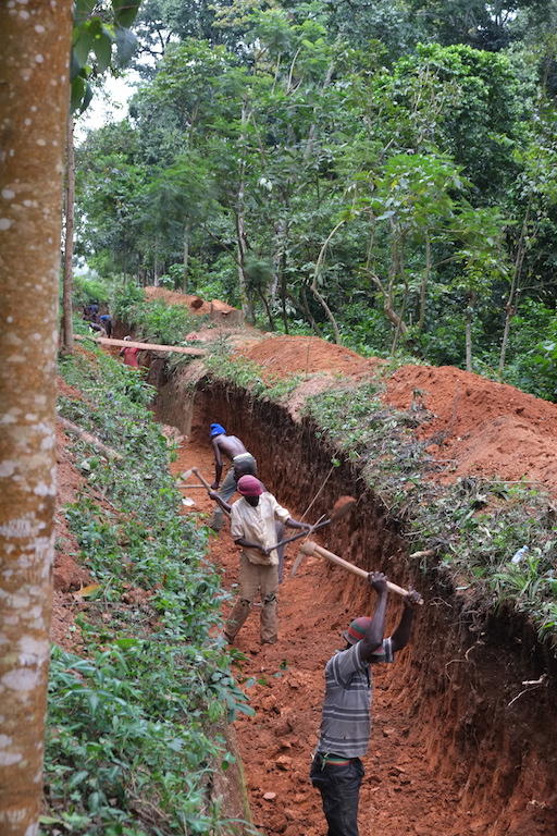 Laborers excavate an elephant trench on the edge of Kibale National Park. Human-wildlife conflict, particularly crop-raiding by elephants, is cited by area residents as the most common problem resulting from the park. Image by Alex Dudley.