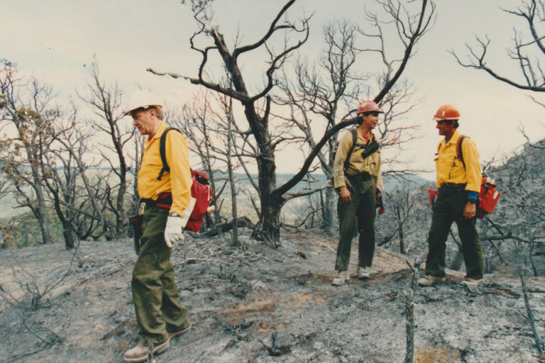 Bruce Babbitt working the Bunniger Fire in Colorado in 1994.