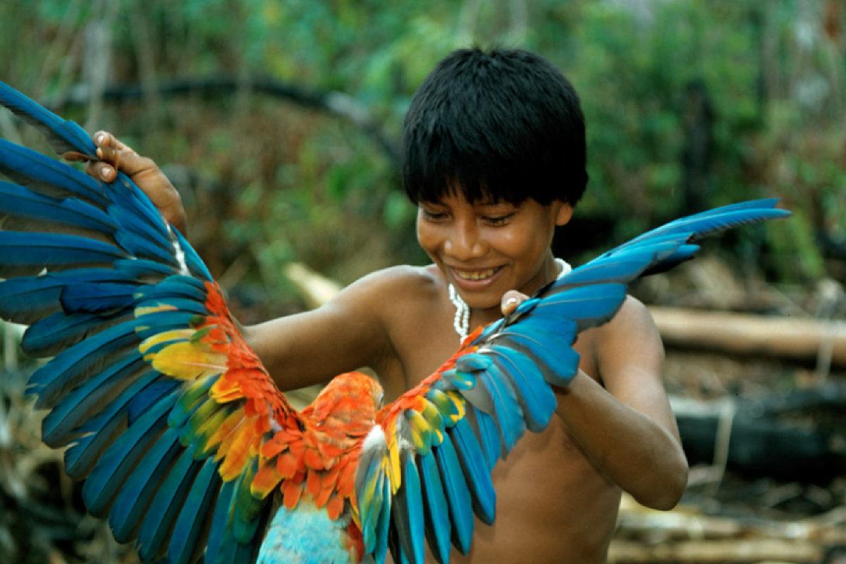 Rainbow over the Colombian Amazon. Photo © Wade Davis