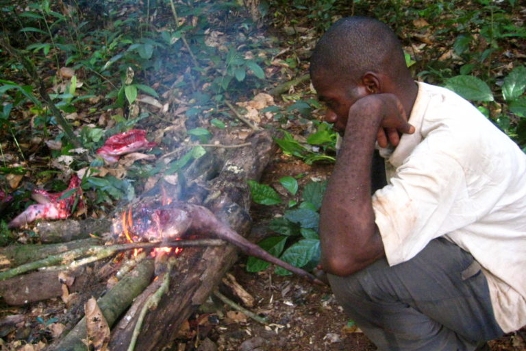 Man roasting bushmeat. Image by Corinne Staley via Flickr (BY-NC-2.0)