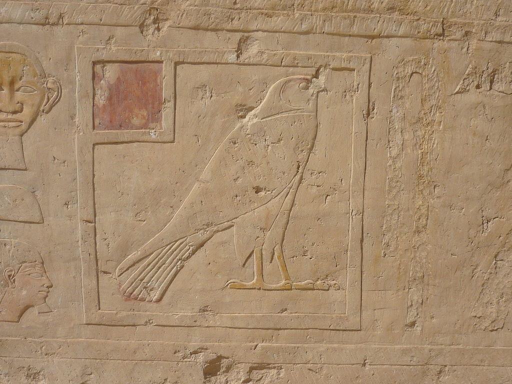 Relief of a falcon from the Hatshepsut temple built before 1458 BC in Egypt. Image by Rémih via WikiMedia Commons CC BY-SA 3.0