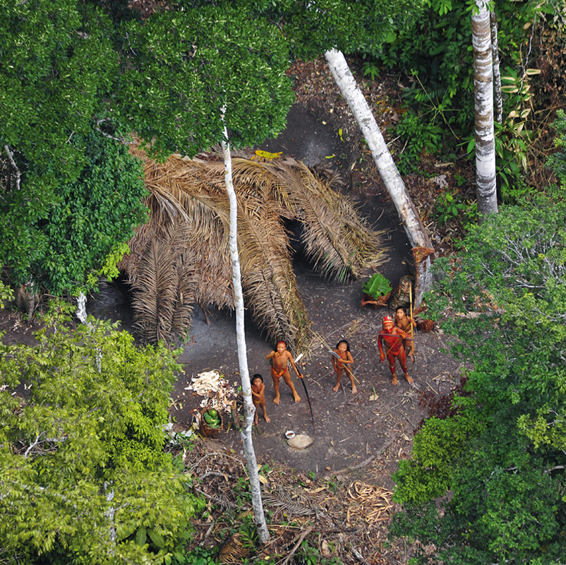 An uncontacted tribe in the Brazilian Amazon photographed in . © Gleison Miranda/FUNAI.