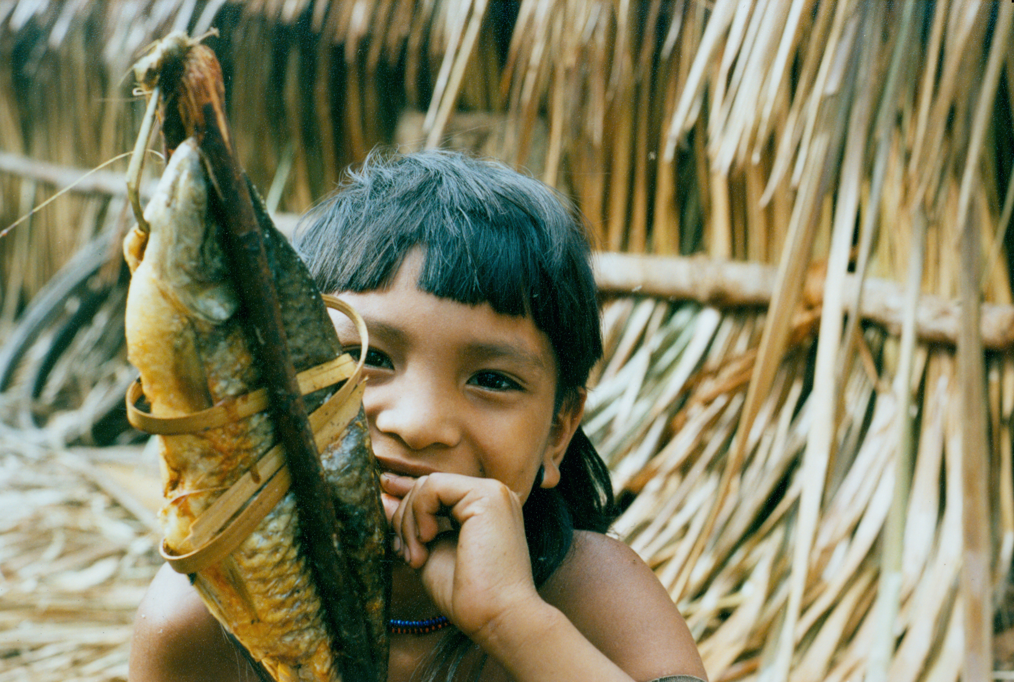 An Enawene Nawe boy shows a smoked fish caught in a dam on the Adowina or Black River, Brazil. The rainforest is being rapidly destroyed by cattle ranchers. © Fiona Watson/Survival