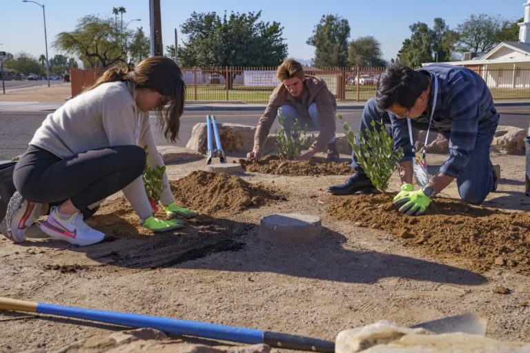 Urban tree planting program in Phoenix, AZ. Photo courtesy of American Forests.