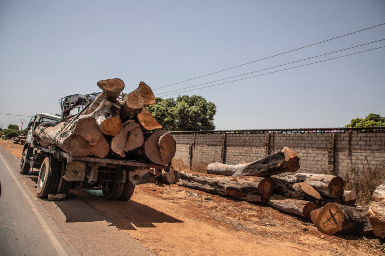 A truck transports timber in the Gambia. ©Jason Florio/United Purpose.