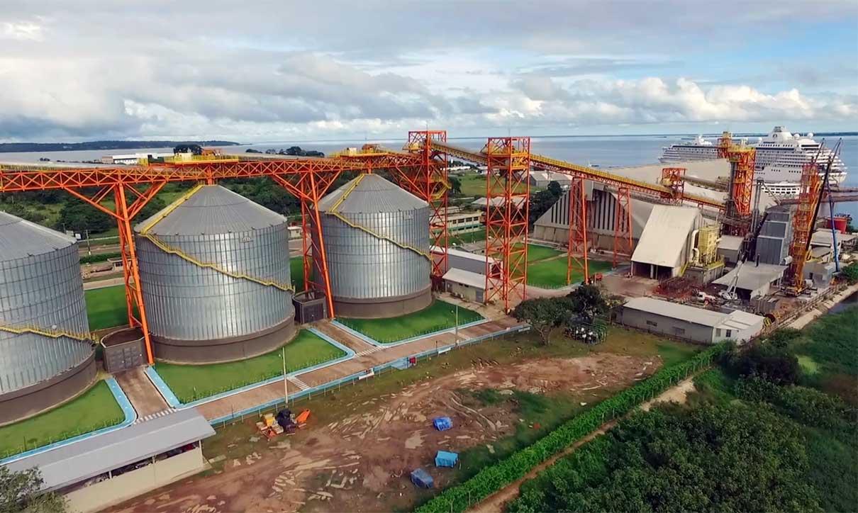 Escoamento da soja brasileira para a China em portos da Amazônia sobrecarrega ainda mais bioma já tão ameaçado