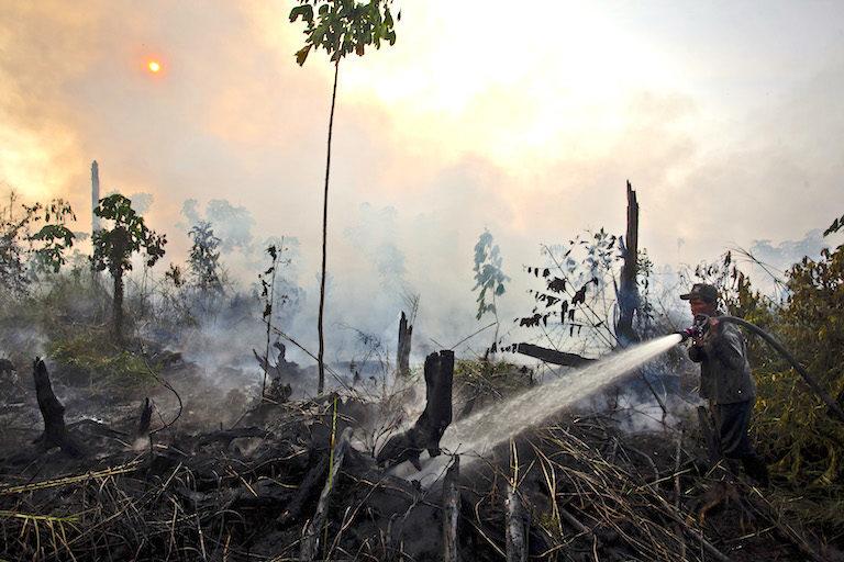Smoke rising from smoldering peatland in PT Raja Garuda Mas Sejati. Photo courtesy of Greenpeace Media Library.