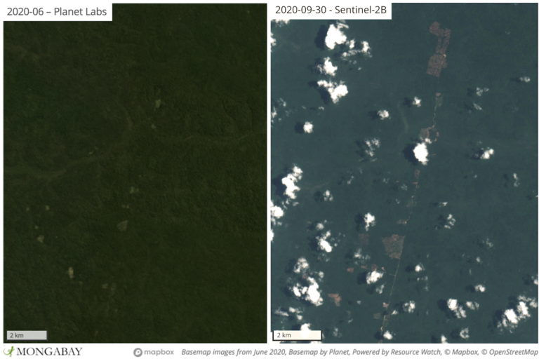 Satellite imagery shows recent deforestation in Apyterewa Indigenous Territory.
