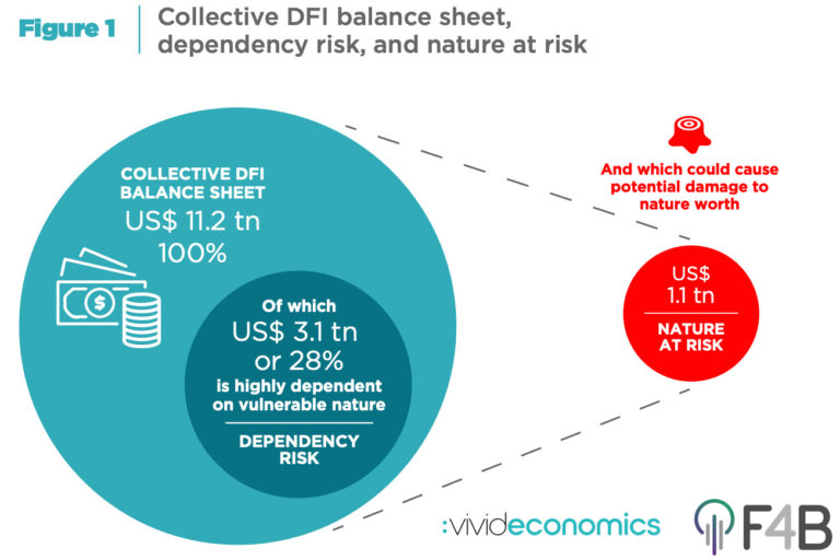 "The Finance for Biodiversity Initiative and Vivid Economics released ""Aligning Development Finance with Nature's Needs: Protecting Nature's Development Dividend"" on November 3. The report estimates the dependency of development finance institutions' (DFIs') collective balance sheet on vulnerable nature (""dependency risk""), alongside the potential damage to nature from t"