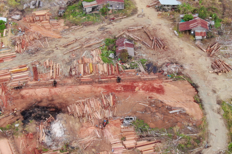 A drone image reveals trees cut from the Cardamom Mountains being processed in a yard. Photo courtesy of Marcus Hardtke.