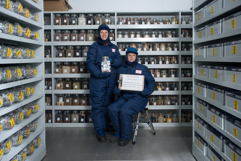 """Researchers in the -20C Kew Millennium Seed Bank vaults. The sign read """"Yunan banana (musa itinerans)…marked 10% of the world's plant species being banked here."""" Photo courtesy of Royal Botanical Gardens Kew."""