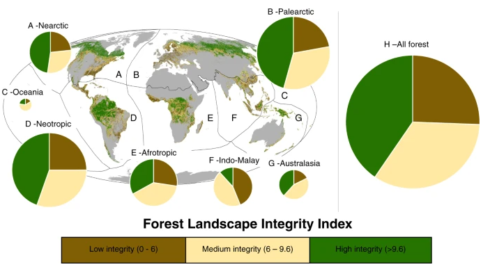 """The Forest Landscape Integrity Index for 2019 categorized into three broad, illustrative classes and mapped across each biogeographic realm (a–g). The size of the pie charts indicates the relative size of the forests within each realm (a–g), and h shows all the world's forest combined."" Image from Grantham et al. Nature Communications  (2020)"