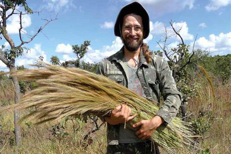 Restaura Cerrado: cientistas, coletores de sementes e voluntários se unem para recuperar a savana mais biodiversa do mundo