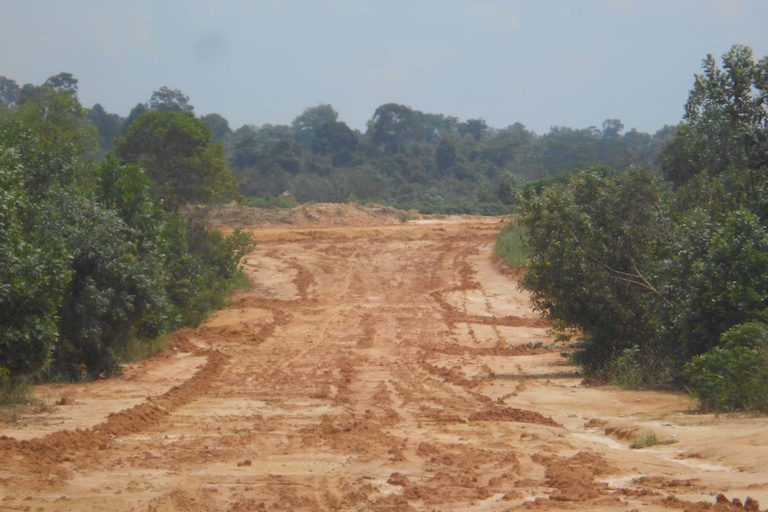 A segment of the West Duri Ring Road, where construction has been temporarily halted amid protests and a multitude of corruption scandals. If completed, it will bisect the elephants' remaining habitat. Image by Suryadi/Mongabay Indonesia.