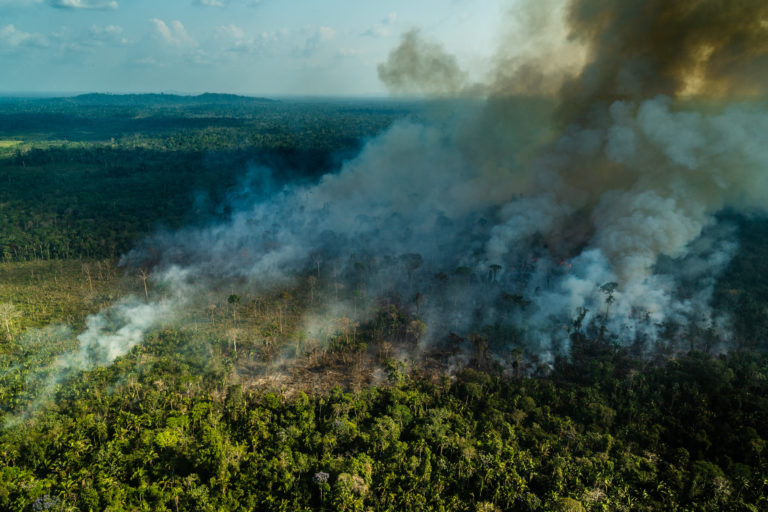 Degraded forests are highly susceptible to fires set by ranchers and farmers. This August 2019 is burning into degraded forest from a recently cleared area. Image © Fábio Nascimento.