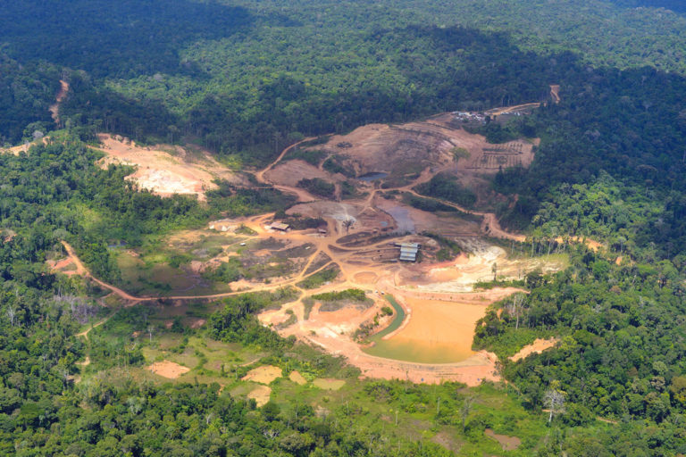 Deforestation in French Guiana. Photo © Didier Gentilhomme