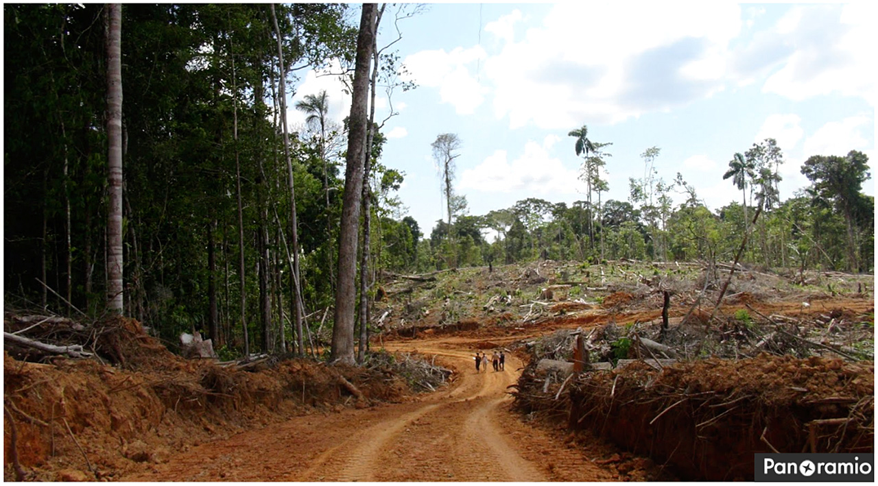 Deforestation on the United Cacao plantation in 2013. Photo by Leoncio Ramirez via Panoramio.
