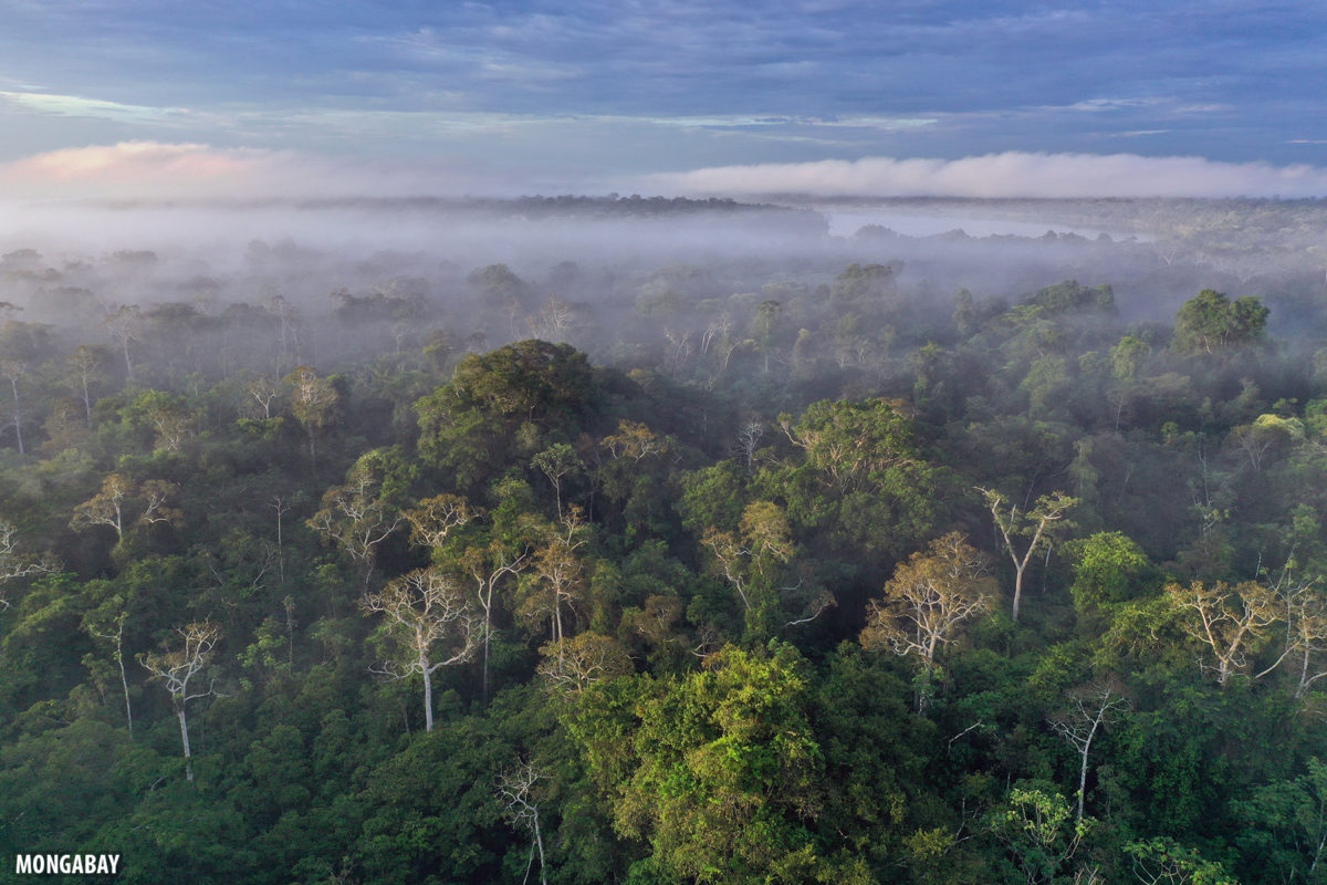 Sunrise over the Amazon rainforest