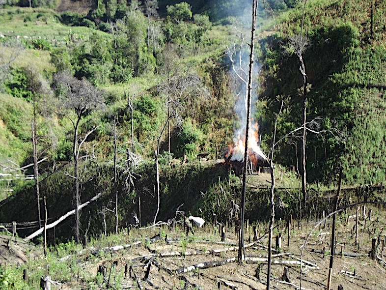 A law enforcement brigade incinerates marijuana during a recent patrol of Tsaratanana Reserve. This year, thirteen people have been arrested and charged with crimes related to marijuana production in the protected area. Image courtesy of Madagascar National Parks.
