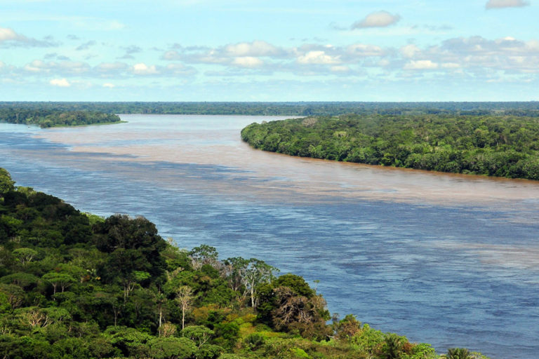 The Amazon near Manaus, Brazil. Image by Neil Palmer/CIAT via Wikimedia Commons (CC BY-SA 2.0).