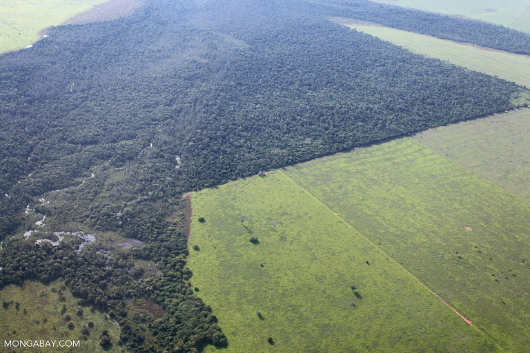 Land newly tilled for soy in the southern Amazon. Image by Rhett A. Butler/Mongabay.
