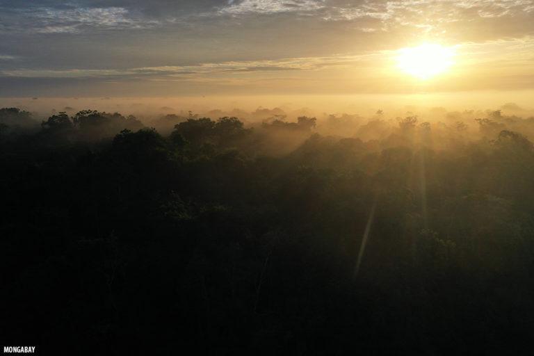 Sunrise in the Amazon. Photo by Rhett A. Butler.