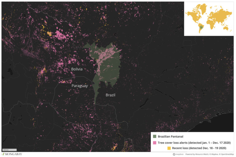 The Pantanal wetland stretches across parts of Brazil, Bolivia and Paraguay, with the lion's share in Brazil.