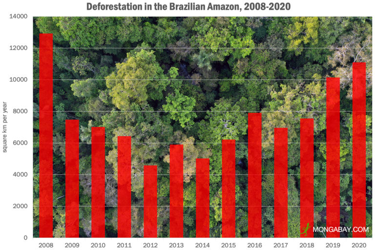 Annual deforestation in the Brazilian Amazon from 2008-2020 according to INPE.