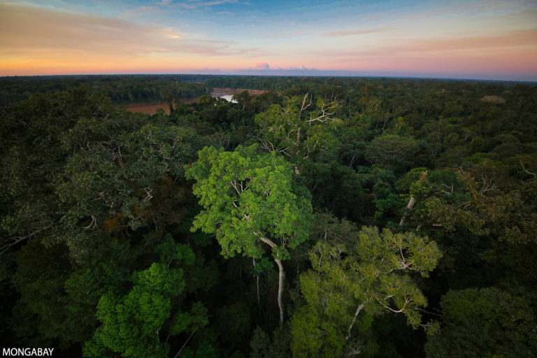 The Peruvian Amazon. Photo credit: Rhett A. Butler