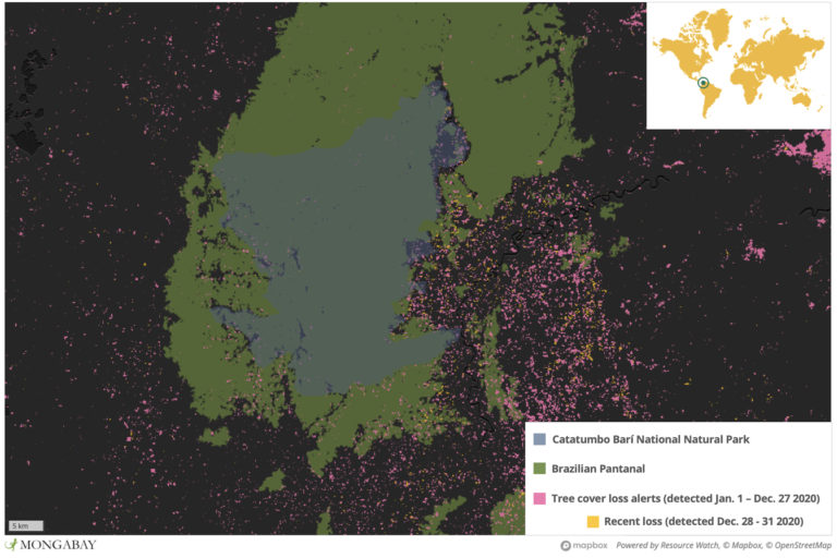 Catatumbo Barí National Natural Park protects some of the last primary rainforest in the region. But satellite data show deforestation continued to whittle it away in 2020 -- including inside the park.