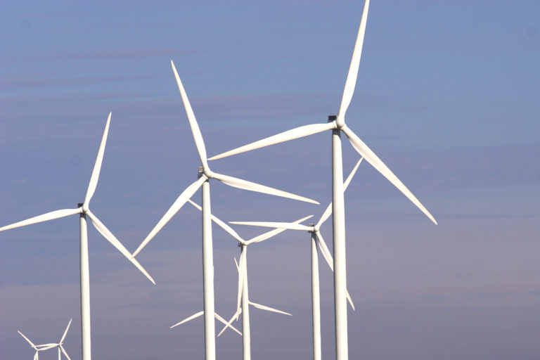 Wind farm. Photo credit: Rhett A. Butler