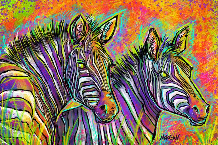 Plains zebra by Morgan Richardson