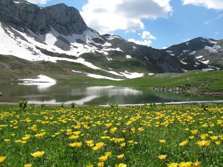 A lake on Sinjajevina Mountain. Image courtesy of the Save Sinjajevina Association.