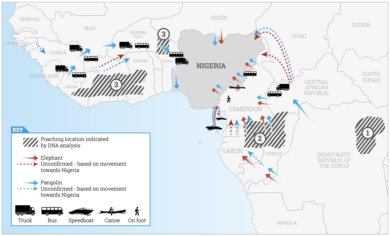 EIA Nigeria report graphic