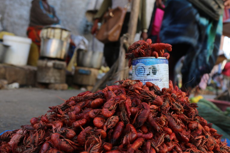 Invasion of the crayfish clones: Q&A with Ranja Andriantsoa