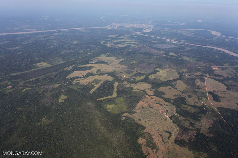 Deforestation for soy plantations in the Peruvian Amazon. Image by Rhett A. Butler/Mongabay.