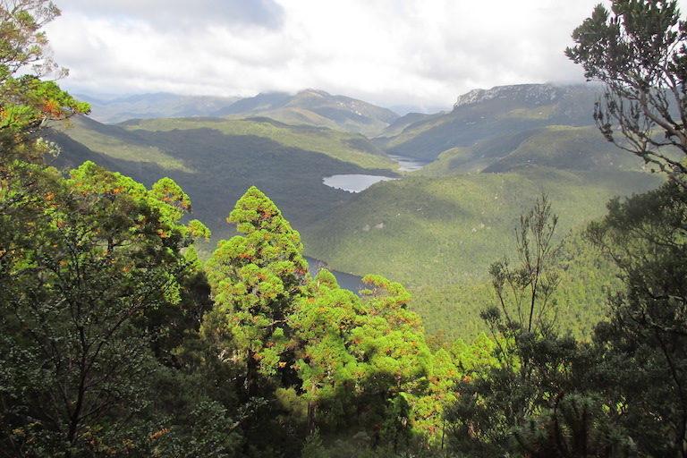 Franklin Gordon-Wild Rivers National Park, Tasmania. Image by Nasher via Wikimedia Commona (CC BY-SA 4.0).
